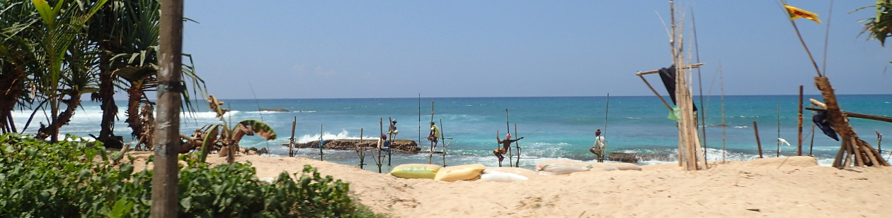 RISING SEAS: From the Indian Ocean to the Caribbean Sea